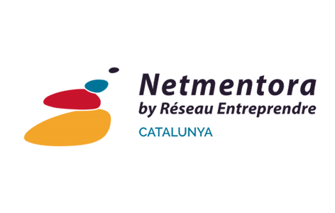 logo Netmentora